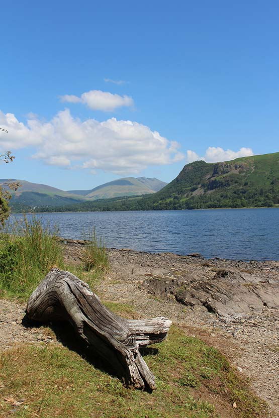 Summer at Derwentwater