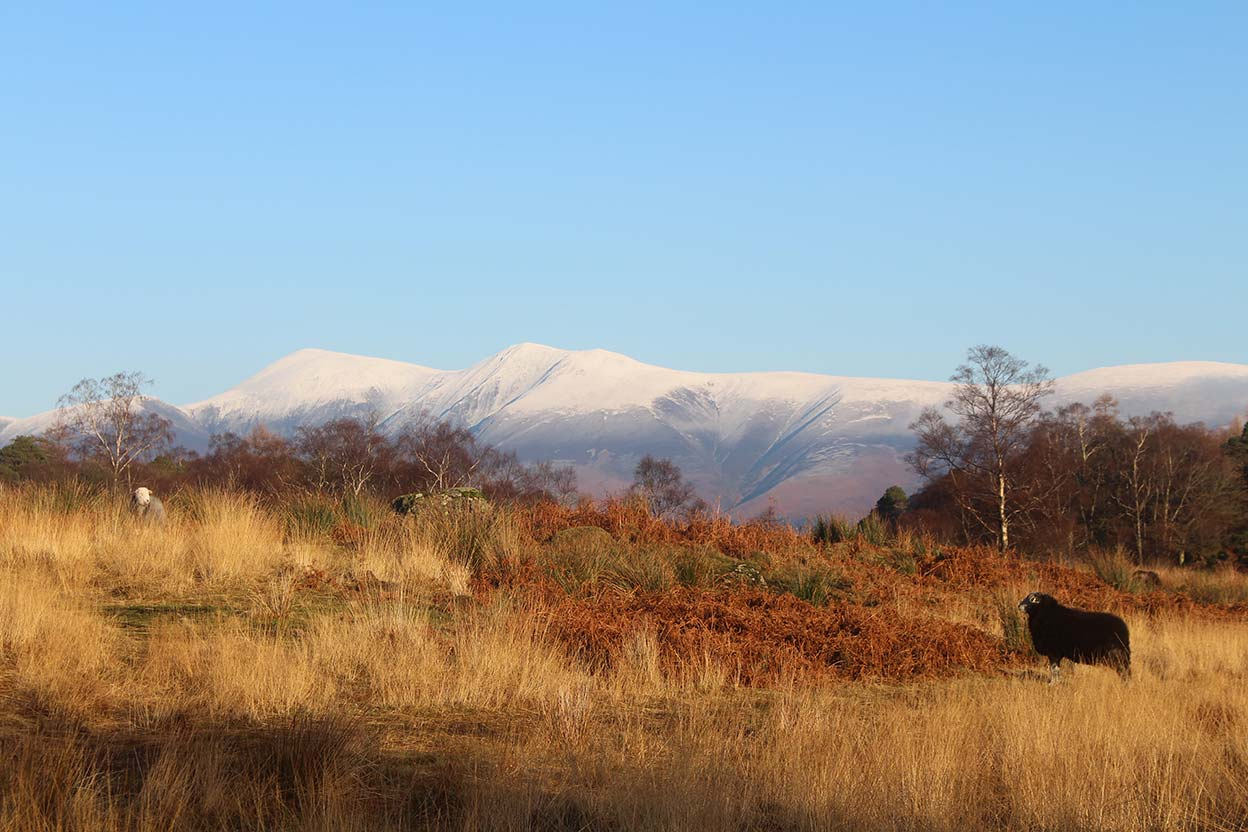 Snowcapped Skiddaw from the path from Manesty to Derwentwater in winter