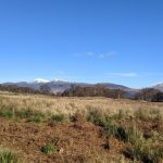 View of the Skiddaw range from the fields near Manesty